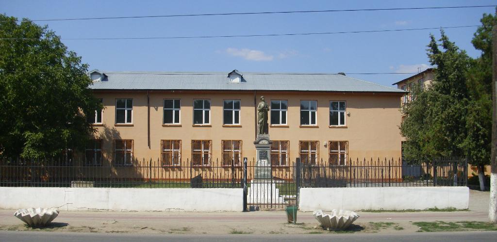 """Şcoala Gimnazială """"Gheorghe Manu"""" Budești"""
